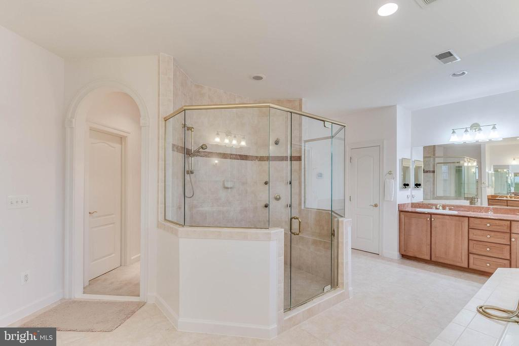 magnificent master bathroom shower - 17066 WINNING COLORS PL, LEESBURG