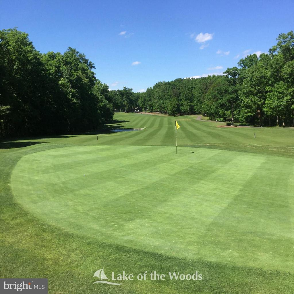 Play a round of golf - 310 HAPPY CREEK RD, LOCUST GROVE