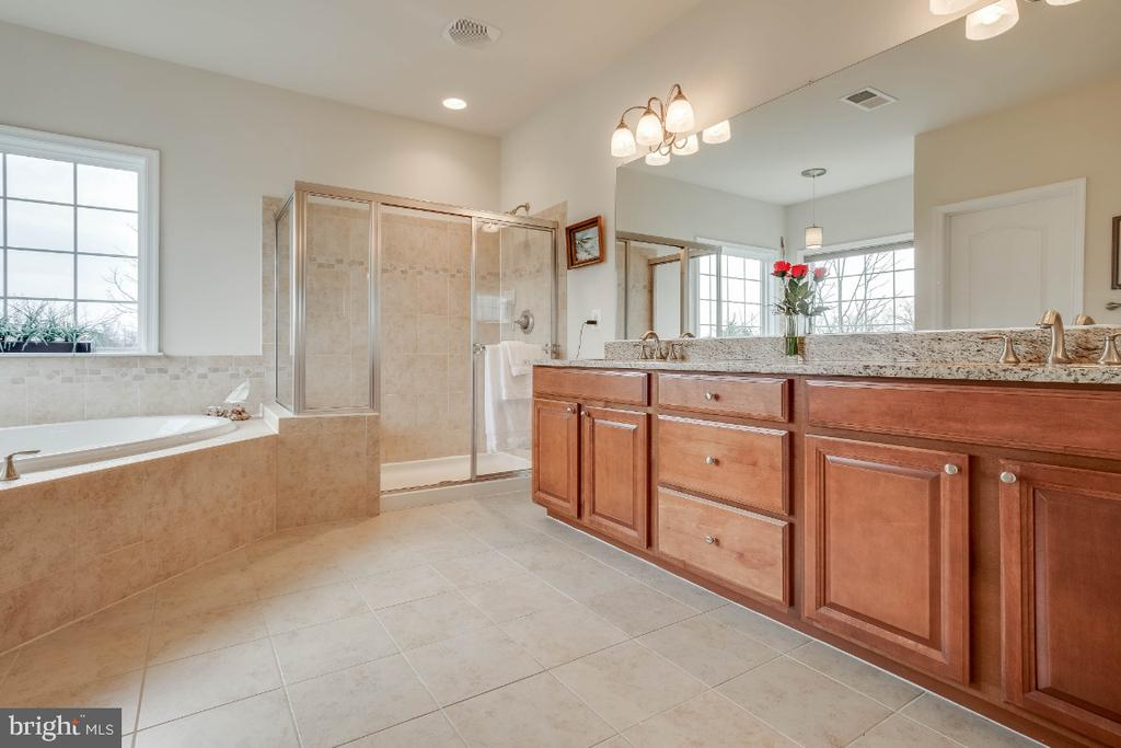 Luxury Master Bathroom - 41985 RIDING MILL PL, ASHBURN