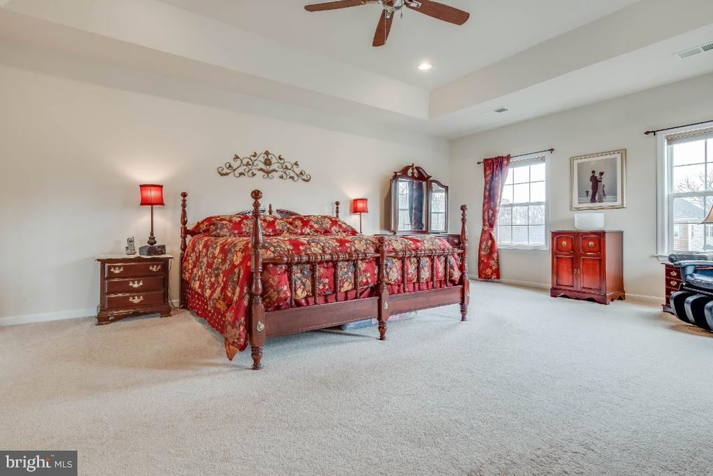 Large Master Bedroom with Tray Ceiling - 41985 RIDING MILL PL, ASHBURN