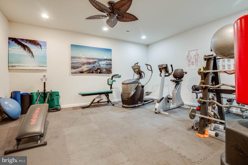 Gym on the Lower Level - 41985 RIDING MILL PL, ASHBURN