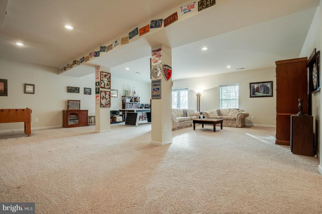 Walkout Level Rec Room - 41985 RIDING MILL PL, ASHBURN
