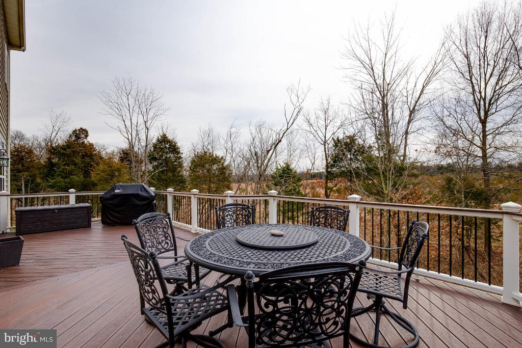 Composite Deck Overlooking Conservancy Land - 41985 RIDING MILL PL, ASHBURN