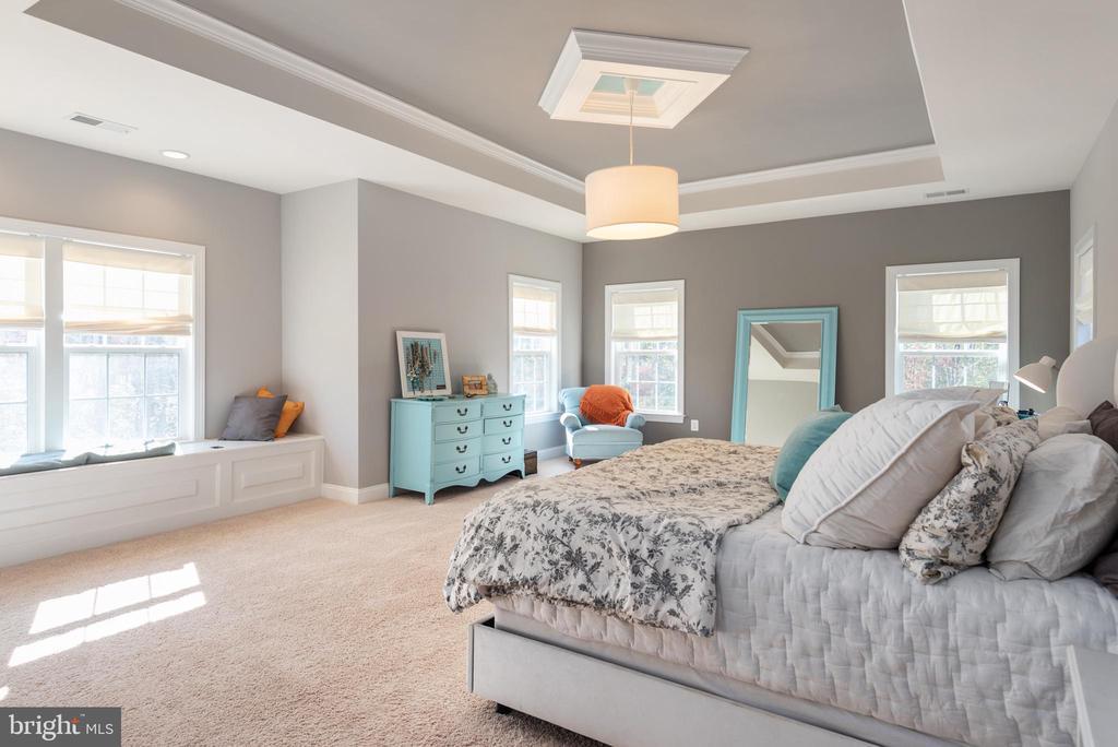 Master Bedroom with Custom Ceilings... - 8124 TWELFTH CORPS DR, FREDERICKSBURG