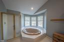 Luxury master bath - 43260 PRESTON CT, ASHBURN