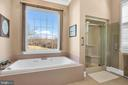 Views even from the tub - 36704 SNICKERSVILLE TPKE, PURCELLVILLE
