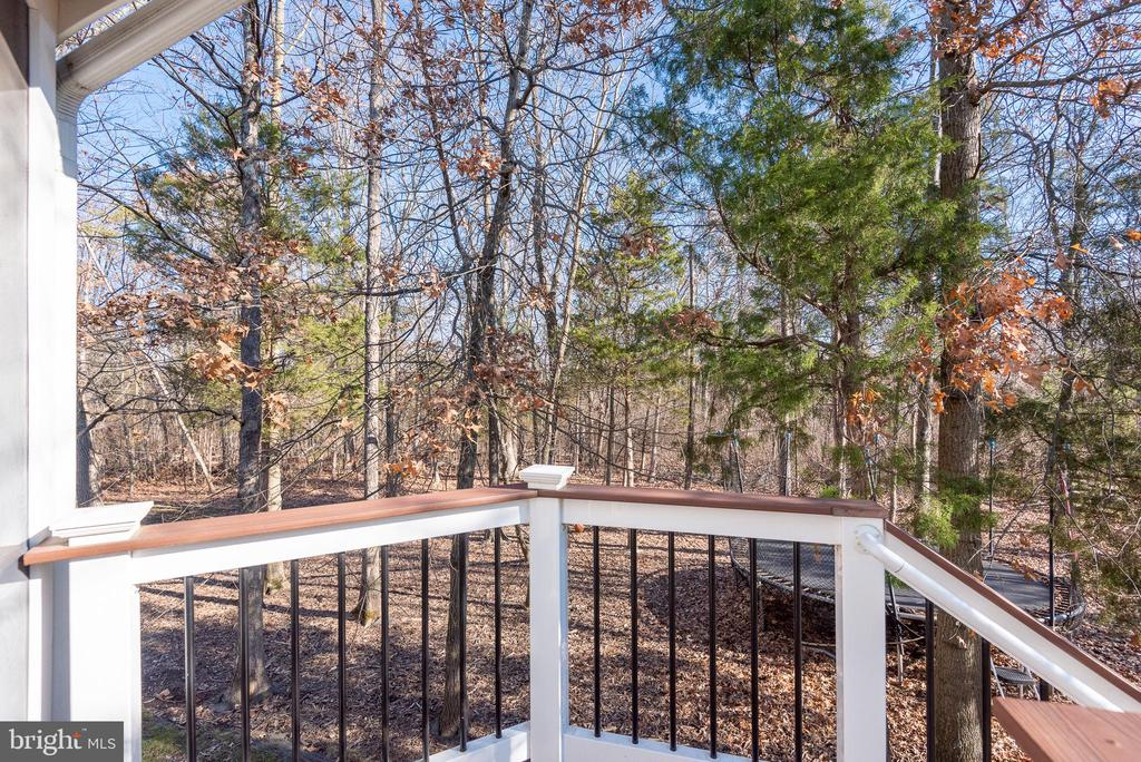 View of nature preserve behind home - 25638 ELK LICK RD, CHANTILLY