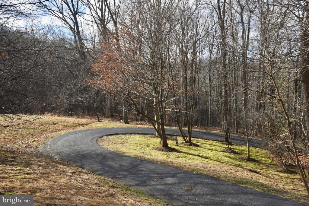 Driveway - 1628 F T VALLEY RD, SPERRYVILLE