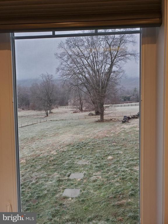 View from Master Bedroom - 1504 MARKER RD, MIDDLETOWN