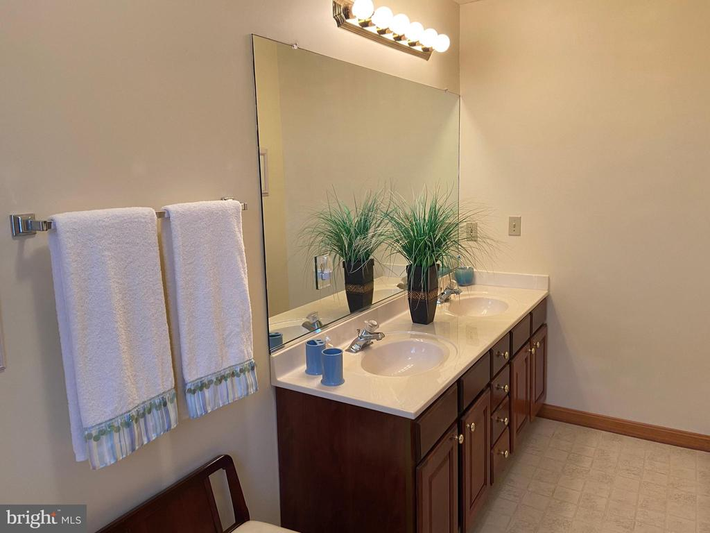 Master Bath - 2402 LAKEVIEW PKWY, LOCUST GROVE