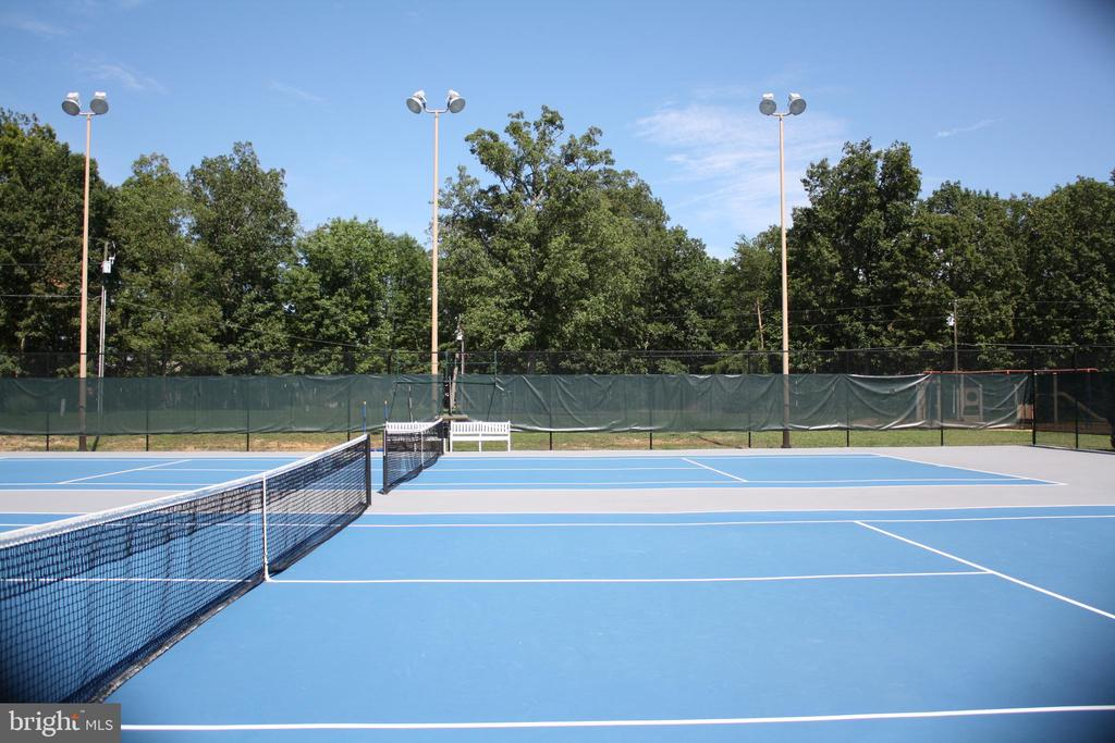 Tennis Courts - 2402 LAKEVIEW PKWY, LOCUST GROVE