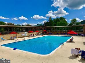 Beautiful Pool(s) - 3005 S LEISURE WORLD BLVD #405, SILVER SPRING
