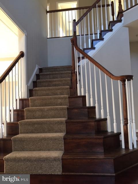 Staircase - 11 STAFFORD MANOR WAY, STAFFORD