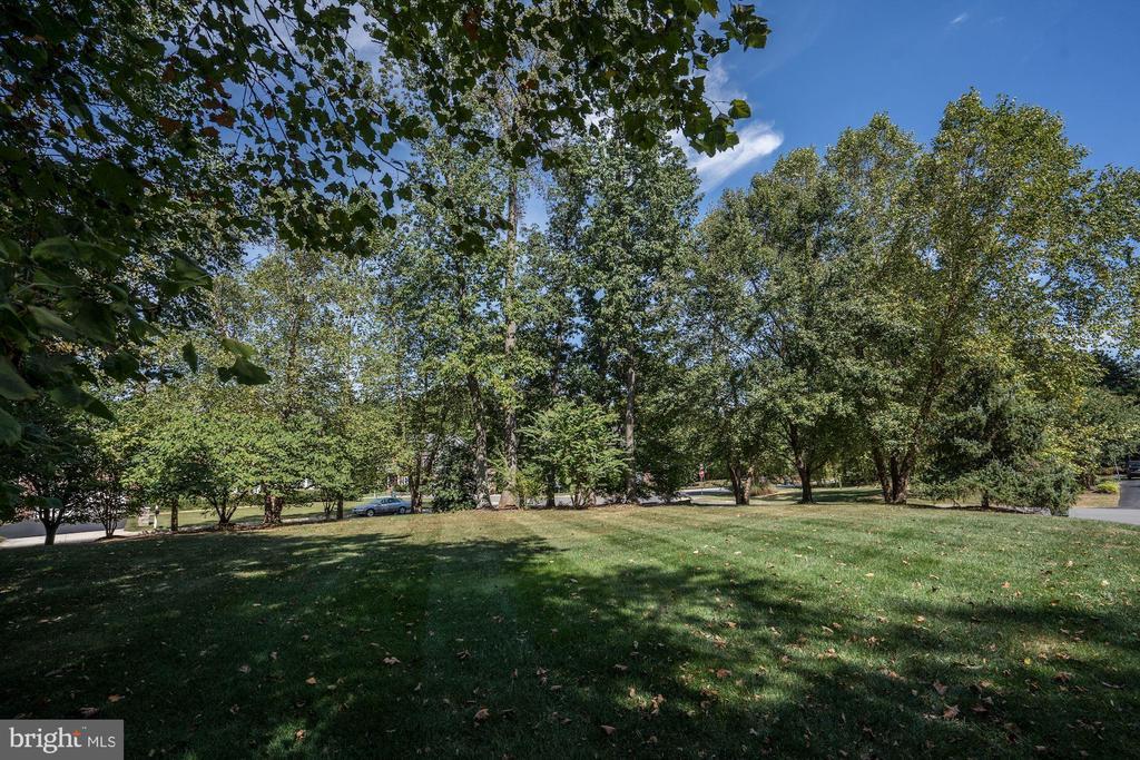 Flat, Open Side Yard - 12184 HICKORY KNOLL PL, FAIRFAX