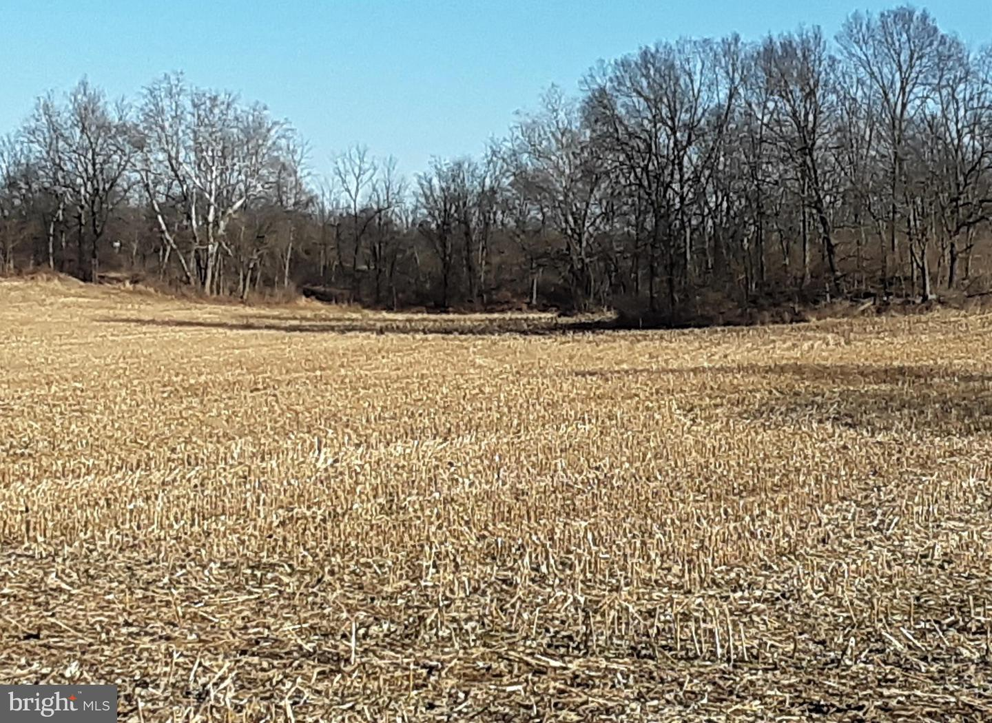 Land for Sale at Wernersville, Pennsylvania 19565 United States