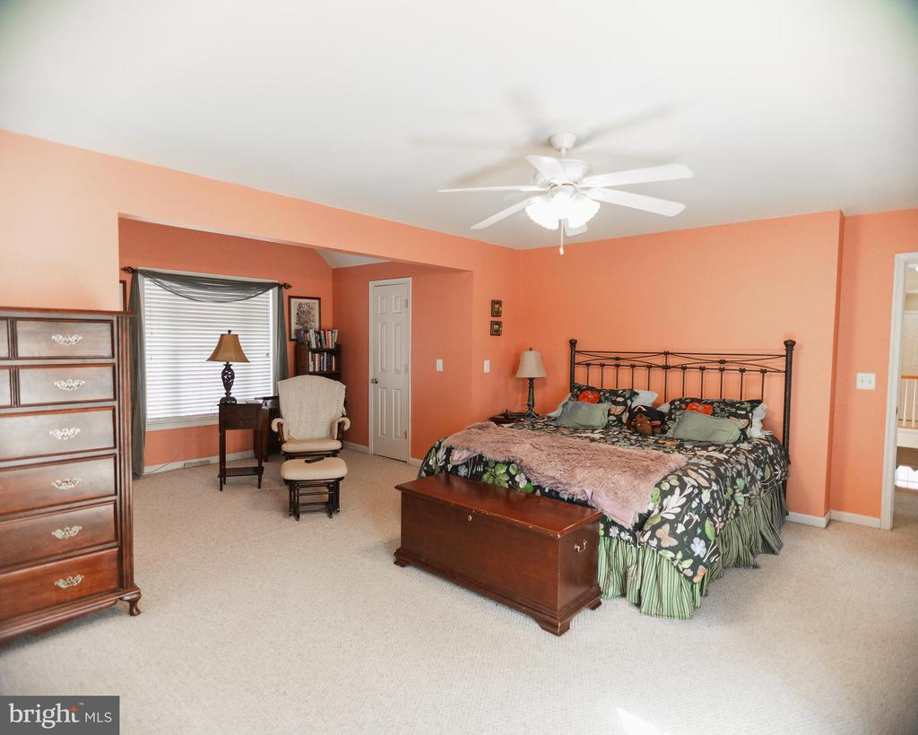 Master suite - 20176 MOUNTAIN TRACK RD, ORANGE