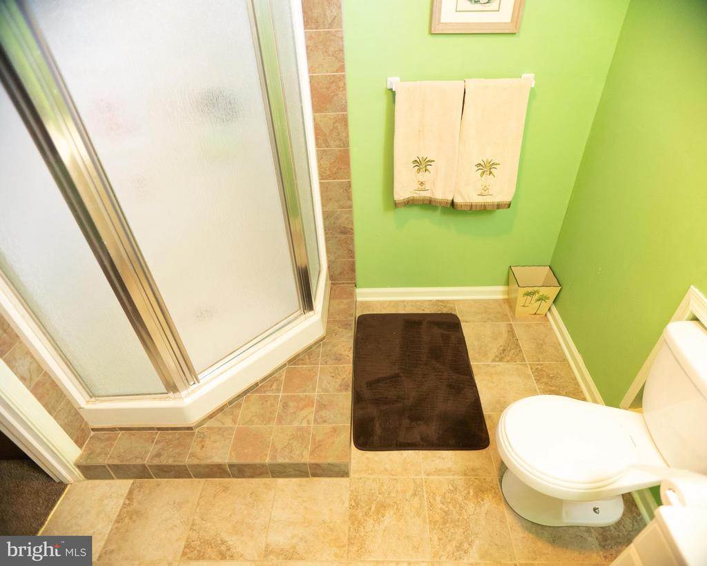 Basement bath - 20176 MOUNTAIN TRACK RD, ORANGE