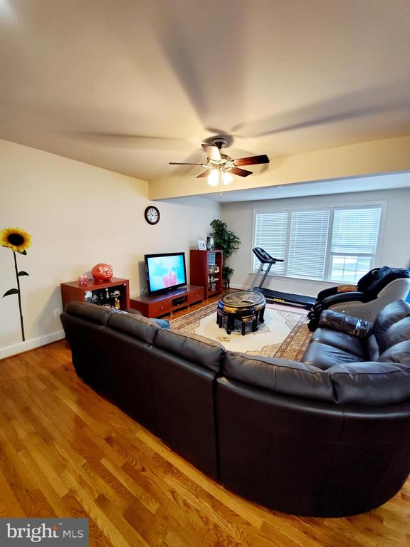 - 42541 PINE FOREST DR, CHANTILLY
