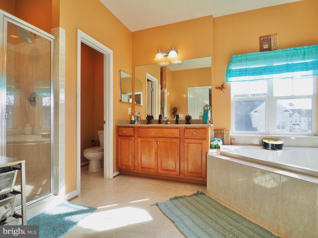 Master Bathroom - 178 WOODSTREAM BLVD, STAFFORD