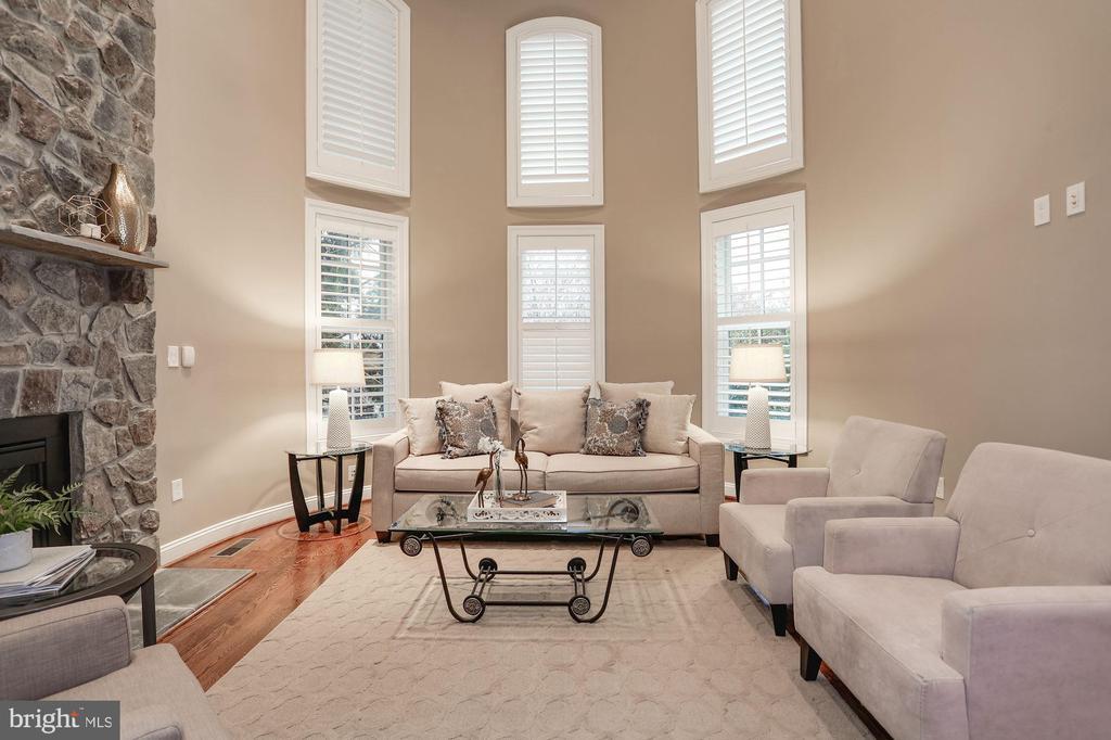 Elegant Living Room - 16727 BOLD VENTURE DR, LEESBURG