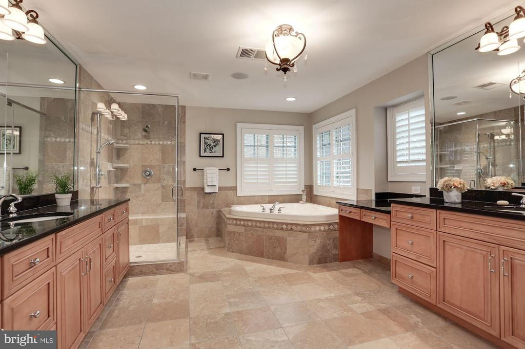 Wide-angle Master Bathroom view - 16727 BOLD VENTURE DR, LEESBURG