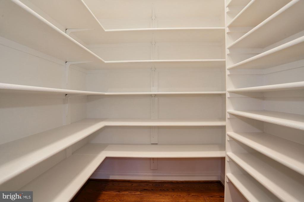 Another Closet! - 16727 BOLD VENTURE DR, LEESBURG