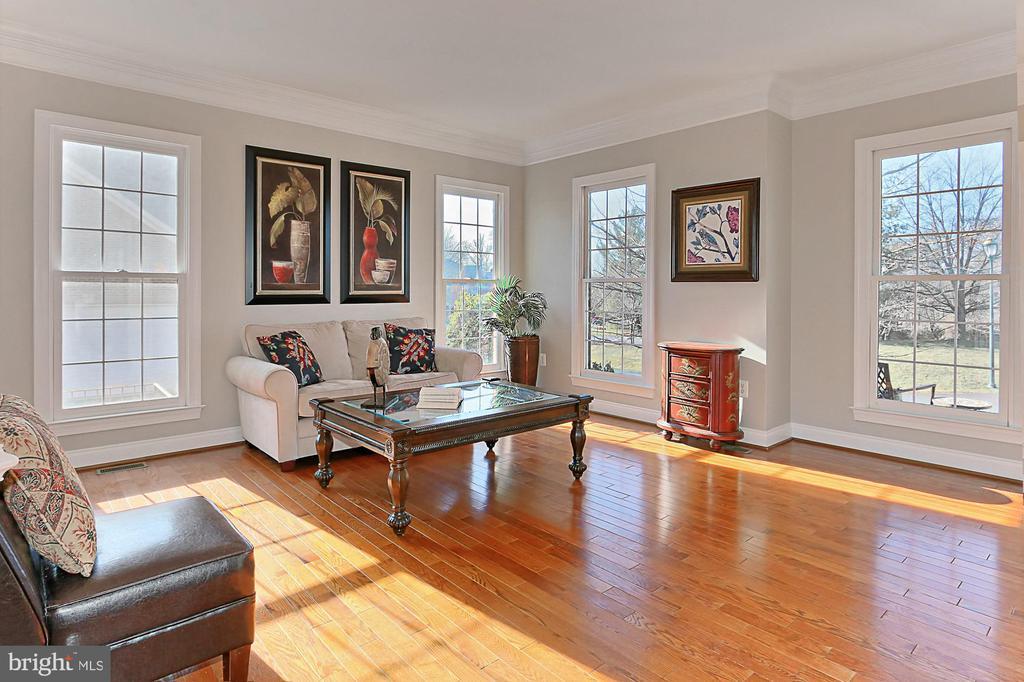 Living room - 18374 KINGSMILL ST, LEESBURG
