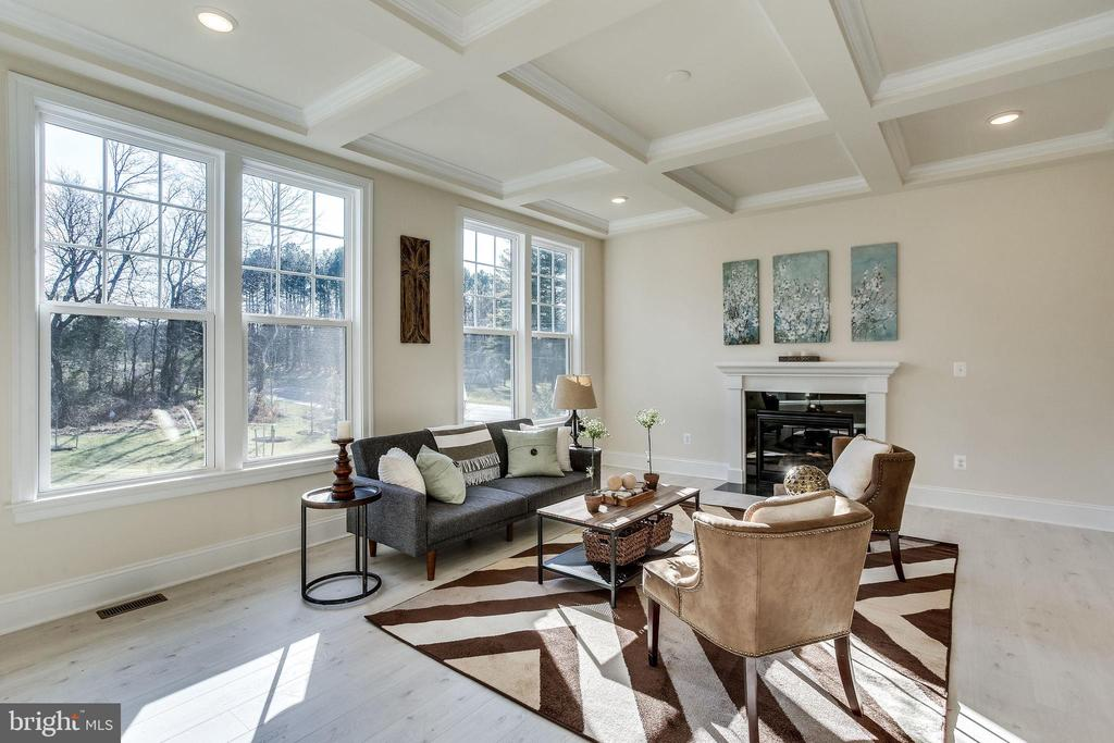 Coffered ceilings in main level family room - 1061 MARMION DR, HERNDON