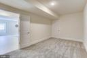 Theater/work-out room - 1061 MARMION DR, HERNDON