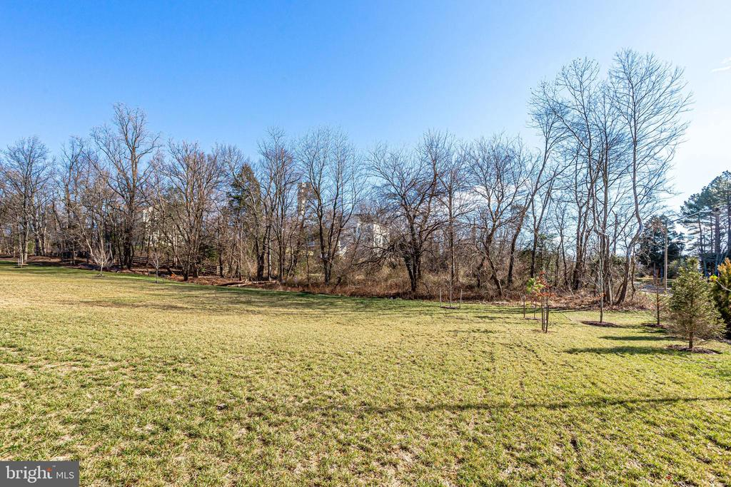 Plenty of green space and privacy - 1061 MARMION DR, HERNDON