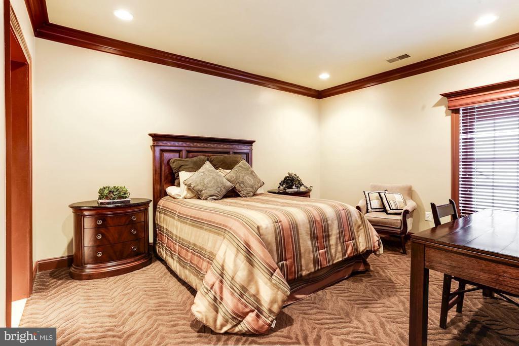 LOWER LEVEL BEDROOM #5 - 201 LONG TRAIL LN, ROCKVILLE