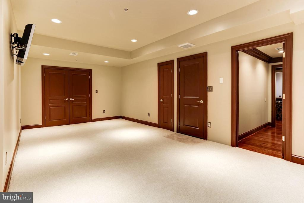 LOWER LEVEL BACK AREA WITH PLASMA TV - 201 LONG TRAIL LN, ROCKVILLE
