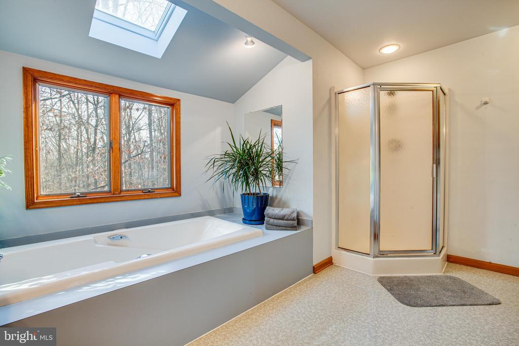 Soaking Tub with Skylight and Forest View - 7400 BROWNS FARM RD, SPOTSYLVANIA