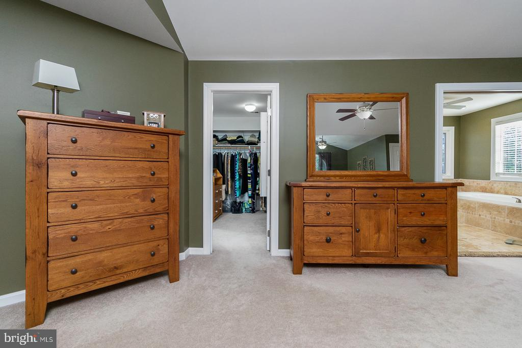 Two large WI Closets plus Extra Storage Closet - 1515 JUDD CT, HERNDON