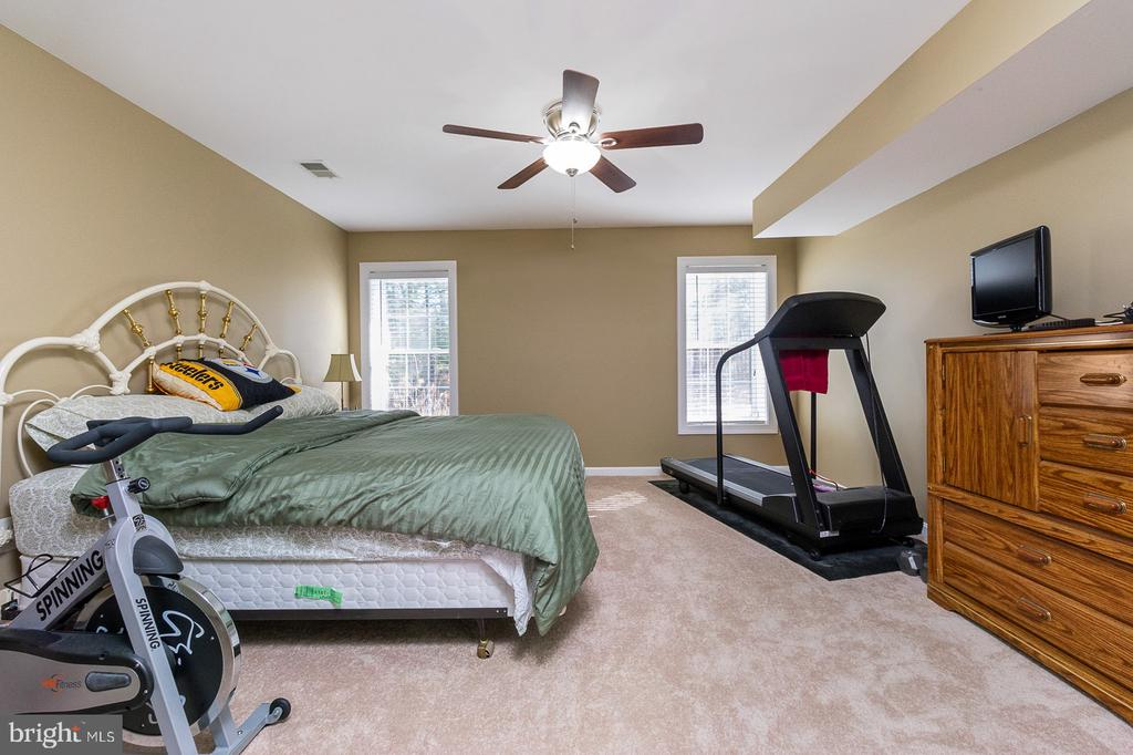 5th Bedroom - Lower Level - 1515 JUDD CT, HERNDON