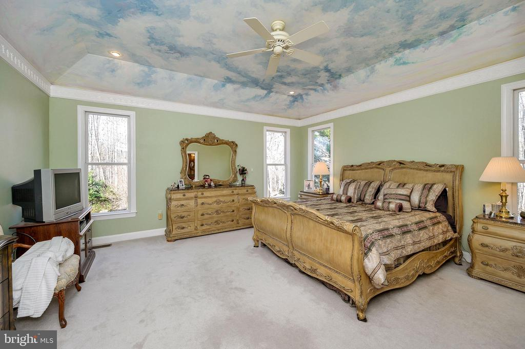 Owner's Suite with 11' Tray Ceiling... - 6142 WALKER'S HOLLOW WAY, LOCUST GROVE