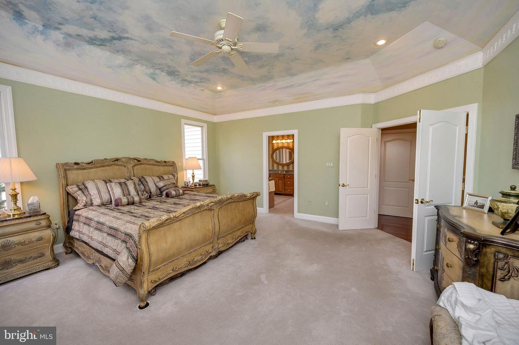 Professional Ceiling Mural & Custom Frieze - 6142 WALKER'S HOLLOW WAY, LOCUST GROVE