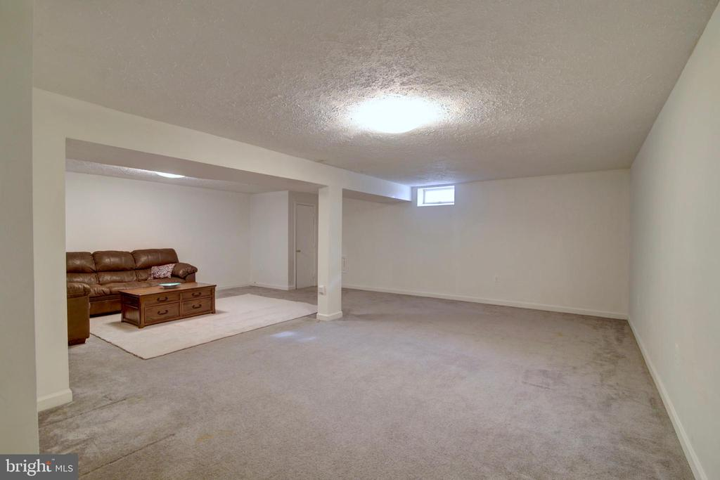 Huge Open Space in Basement - 123 APPLEGATE DR, STERLING