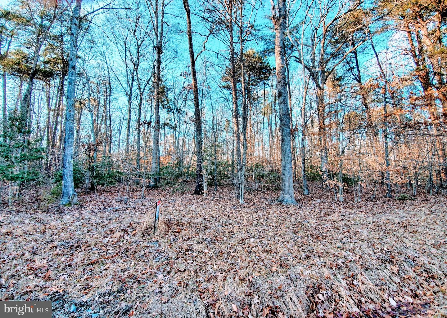 Land for Sale at Goldvein, Virginia 22720 United States