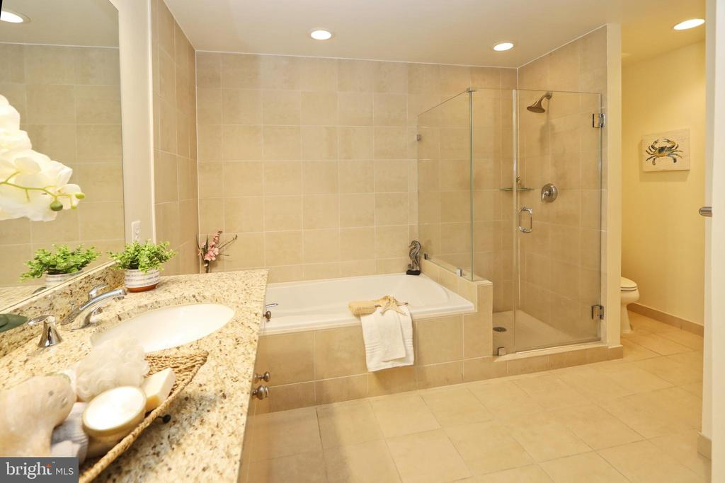 Separate tub and showeer - 11990 MARKET ST #1914, RESTON