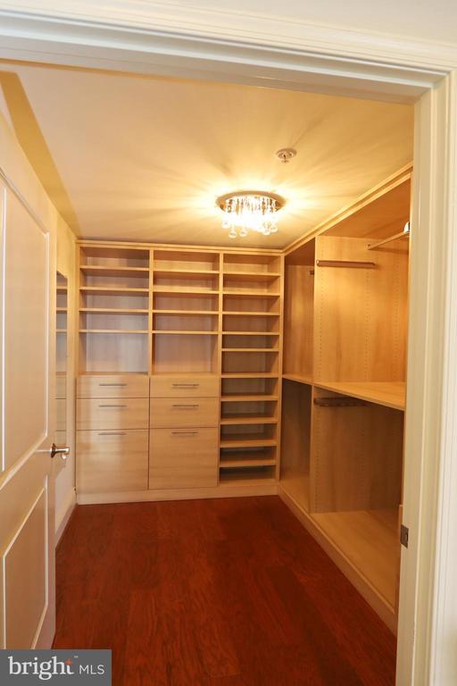 Spacious, customized walk-in closet - 11990 MARKET ST #1914, RESTON