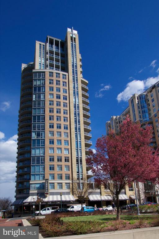 Spring in the park in front of Midtown - 11990 MARKET ST #1914, RESTON