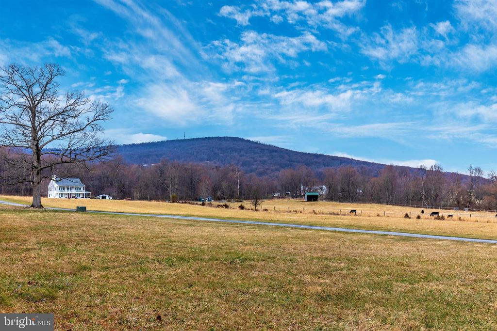 View from the yard. - 1504 MARKER RD, MIDDLETOWN