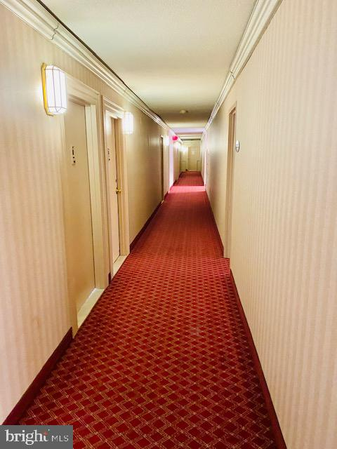 Interior corridor - 1300 ARMY NAVY DR #105, ARLINGTON