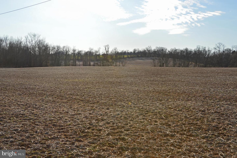 Terreno per Vendita alle ore Taneytown, Maryland 21787 Stati Uniti