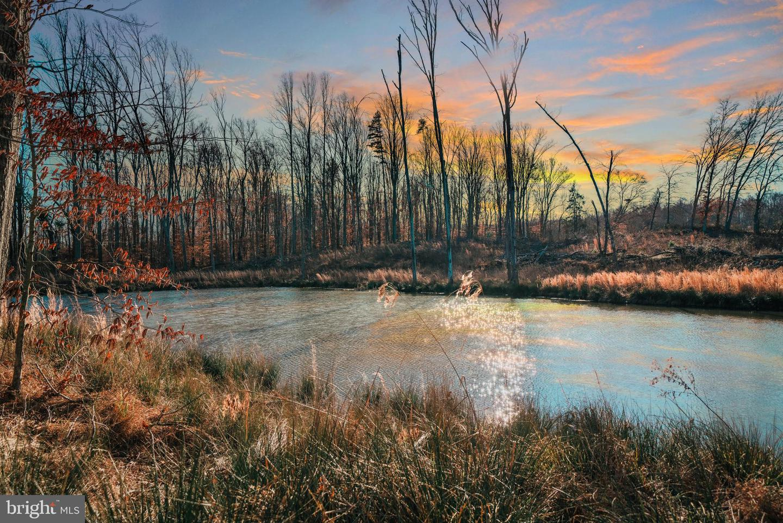 土地 為 出售 在 Radiant, 弗吉尼亞州 22732 美國