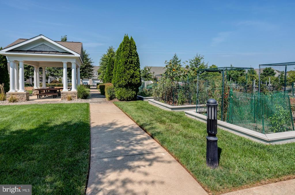 Community Gardening - 20570 HOPE SPRING TER #401, ASHBURN