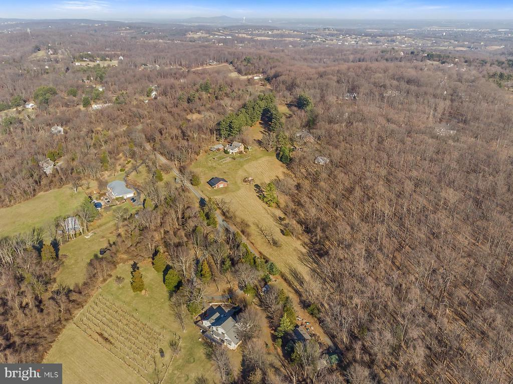 Open pastures border wooded areas for privacy. - 18217 CANBY RD, LEESBURG