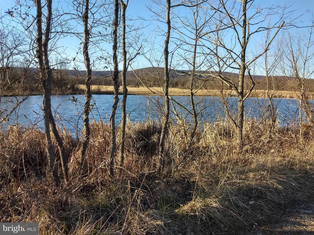 pond attracts wildlife and birds - 20775 AIRMONT RD, BLUEMONT