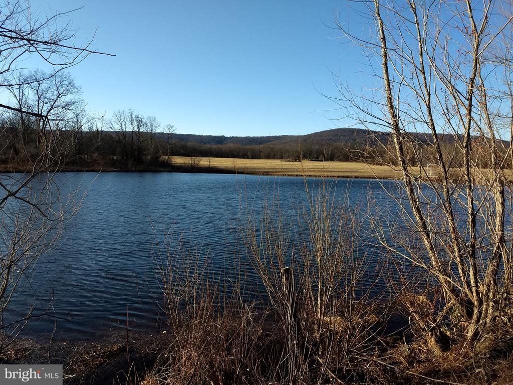 beautiful pond - 20775 AIRMONT RD, BLUEMONT